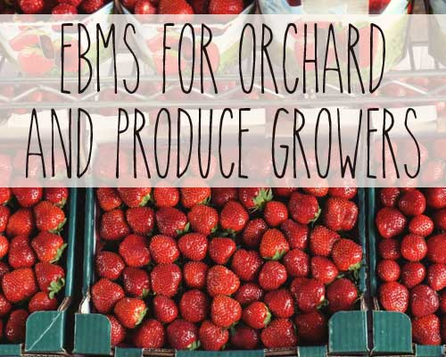 EBMS for Orchard & Produce Growers